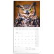 Poznámkový kalendář Sovy 2020, 30 × 30 cm