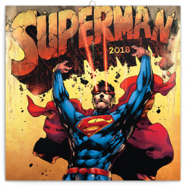 Grid calendar Superman 2018, 30 x 30 cm