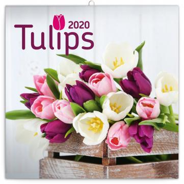 Poznámkový kalendář Tulipány 2020, 30 × 30 cm