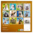 Poznámkový kalendář Úsměv, prosím... 2022, 30 × 30 cm