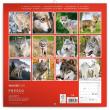 Poznámkový kalendář Vlci 2020, 30 × 30 cm