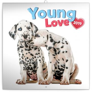 Poznámkový kalendář Young Love 2019, 30 x 30 cm
