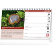 Stolní Houbařský kalendář 2021, 23,1 × 14,5 cm