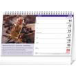 Stolní kalendář Bylinky a čaje SK 2021, 23,1 × 14,5 cm