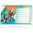 Stolní kalendář Frozen - Ledové království 2019, 23,1 x 14,5 cm