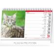 Stolní kalendář Kočky – Mačky CZ/SK 2019, 23,1 x 14,5 cm