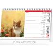 Stolní kalendář Kočky – Mačky CZ/SK 2020, 23,1 × 14,5 cm