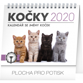 Desk calendar Cats – with cat names 2020, 16,5 × 13 cm