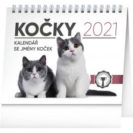 Desk calendar Cats – with cat names 2021, 16,5 × 13 cm