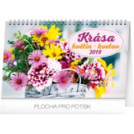 Stolní kalendář Krása květin – Krása kvetov CZ/SK 2019, 23,1 x 14,5 cm