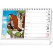 Stolní kalendář Krtko SK 2021, 23,1 × 14,5 cm