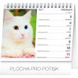 Stolní kalendář Mačky – s menami mačiek SK 2018, 16,5 x 13 cm
