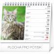 Stolní kalendář Mačky – s menami mačiek SK 2019, 16,5 x 13 cm