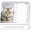 Stolní kalendář Mačky – s menami mačiek SK 2020, 16,5 × 13 cm