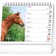 Stolní kalendář Poézia koní SK 2021, 16,5 × 13 cm