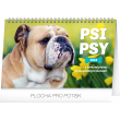 Stolní kalendář Psi – Psy CZ/SK 2019, 23,1 x 14,5 cm