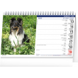 Stolní kalendář Psi – Psy CZ/SK 2022, 23,1 × 14,5 cm