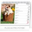 Stolní kalendář Psi – se jmény psů 2020, 16,5 × 13 cm, 16,5 × 13 cm