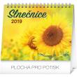 Stolní kalendář Slnčice s citátmi SK 2019, 16,5 x 13 cm