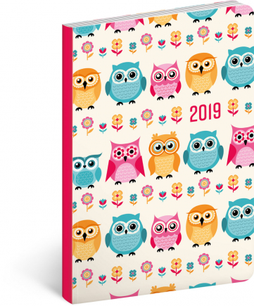 Ultralight Diary Owls 2019, 11 x 17 cm
